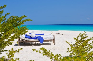 Mnemba Island sunbathing