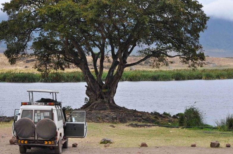 Ngorongoro Crater, Ngoitoktok Springs