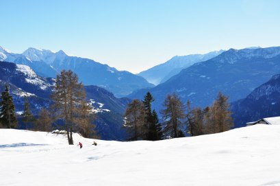 Torgnon Ski